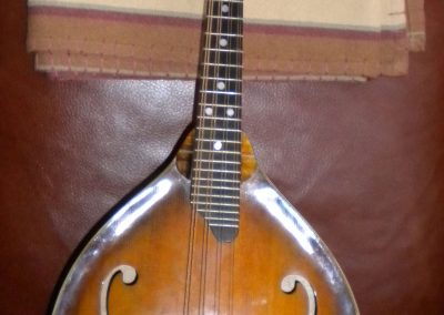 Unicorn Mandolin No. 151 Front