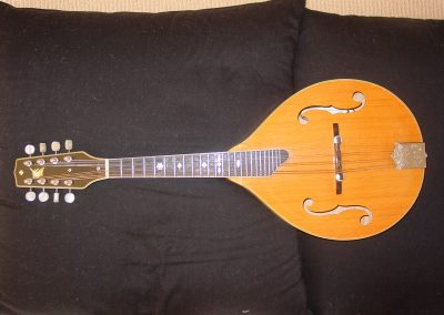 Unicorn Mandolin No. 105