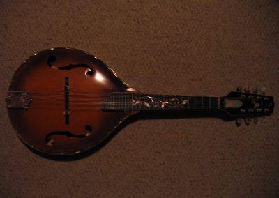 Unicorn Mandolin No. 79