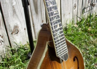 Unicorn Mandolin No. 101