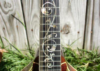 Unicorn Mandolin No. 11