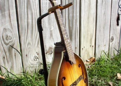 Unicorn Mandolin No. 12