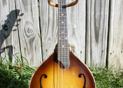 Unicorn Mandolin No. 23