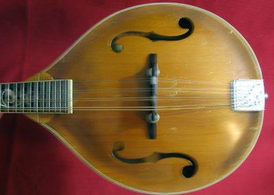 Unicorn Mandolin No. 86