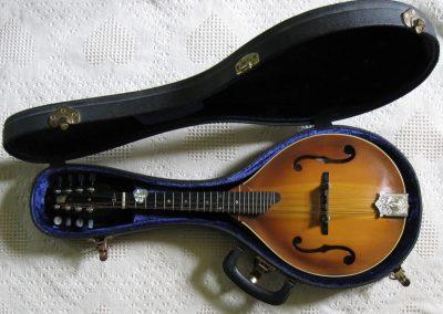Unicorn Mandolin No. 99 In Case