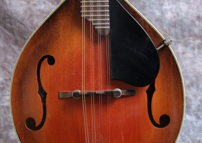 Unicorn Mandolin No. 55