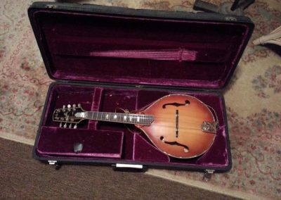 Unicorn Mandolin No. 1