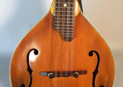 Front view of No. 53 Unicorn Mandolin